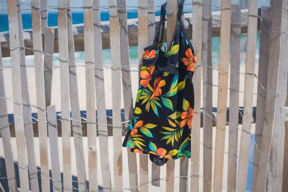 Lost Bathing Suit